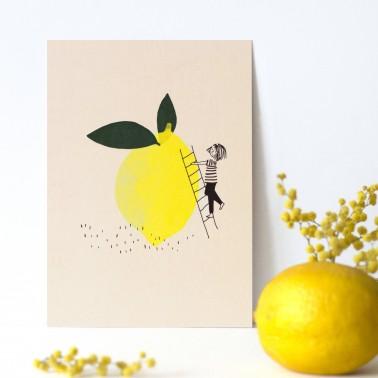 Citronille